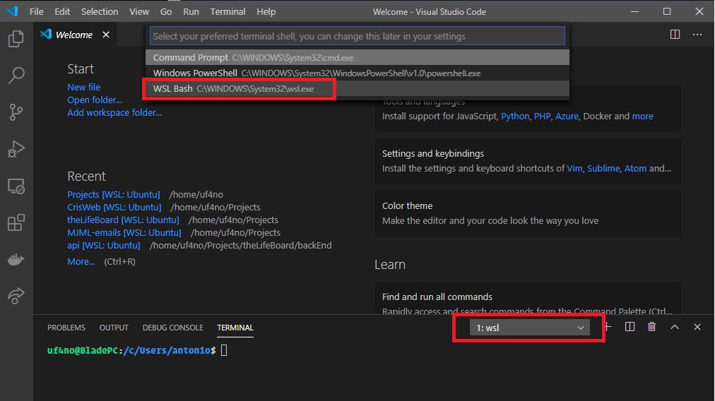 Visual Studio code shell options